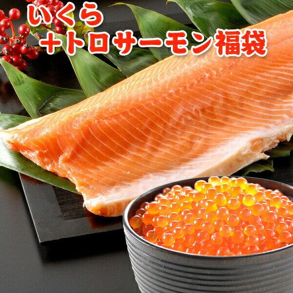 いくら+トロサーモン福袋 送料無料 クーポン利用で6,999 円