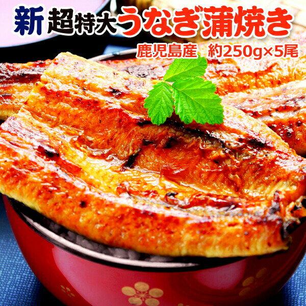 うなぎ 蒲焼 国産 送料無料 超 特大 約250g 5尾 メガサイズ 丑の日