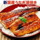 うなぎ 蒲焼 国産 送料無料 特大 約220g×3尾 クーポン利用で6,999円!