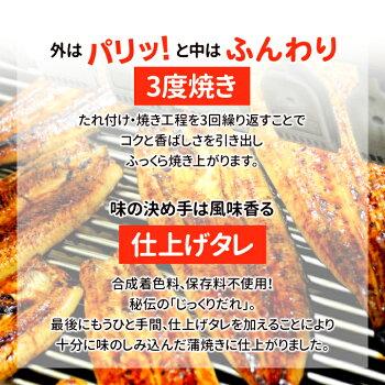 ギフトボックス付国産うなぎ蒲焼【約170g×2尾】【送料無料】3度焼き