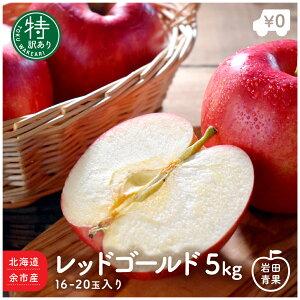 北海道 余市産 特 訳あり レッドゴールド 5kg 16〜20玉入 りんご リンゴ 林檎 つがるりんご 津軽林檎 津軽リンゴ つがる 北海道産 国産 果物 お取り寄せ 旬の果物 くだもの 旬 フルーツ 詰め合