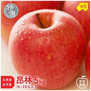 北海道余市産 特選 昂林 5kg 16〜20玉入 りんご リンゴ 林檎 国産 北海道 北海道産 余市 こうりん 旬 果物 旬 フルーツ ご当地 お取り寄せ プレゼント 贈り物 贈物 訳あり ではありません 贈答用