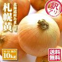 【訳あり 北海道産 玉ねぎ 札幌黄 M〜2L混合 10kg】玉ねぎ タマネギ たまねぎ 訳アリ 送料無料 北海道 野菜 お取り寄…