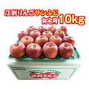 岩手県・江刺りんごサンふじ10kg(自宅用)