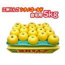 岩手江刺シナノゴールド5kg(自宅用)14〜18玉入り岩手県産りんご
