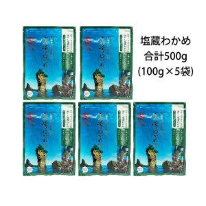 【田老町漁協】岩手県三陸産 真崎わかめ100g×5袋セット(自宅用)塩蔵ワカメ計500gまとめ買い 使いやすい小分けパック