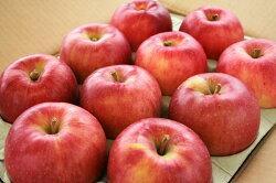 敬老の日ギフトにも喜ばれるリンゴ