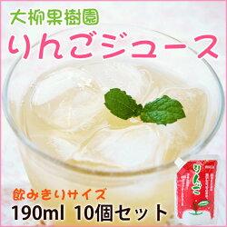 岩手県産リンゴ果汁100%!りんごジュース(大柳果樹園)