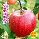 送料無料(自宅用)早生りんごジョナゴールド3kg