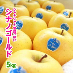 訳ありリンゴシナノゴールド5kg(自宅用)