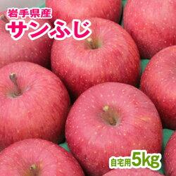 訳ありリンゴサンふじ5kg(自宅用)岩手県産