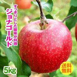 送料無料(自宅用)早生りんごジョナゴールド5kg