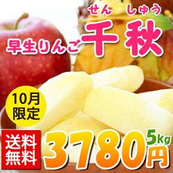 訳あり!送料無料!早生りんご千秋3kg(8〜11玉入り)