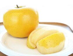 岩手県産りんご、人気の品種しなのゴールド