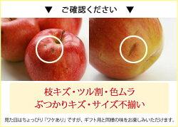 りんご人気品種ふじお得な産地直送