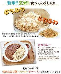 玄米カレー食べてみました!