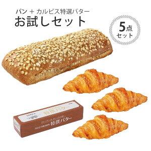 パン 冷凍 焼くだけ ル・フルニル・ドゥ・ピエール シリーズ シリアル・パン 約450g ミニ・クロワッサン 30g バター 100g セット 本州のみ送料無料 ぽっきり 冷凍パン 焼くだけ 業務用 通販