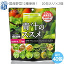 国産青汁 12種類の国産野菜 青汁のススメ3g×40包入り[送料無料 メール便送料無料 MSM]