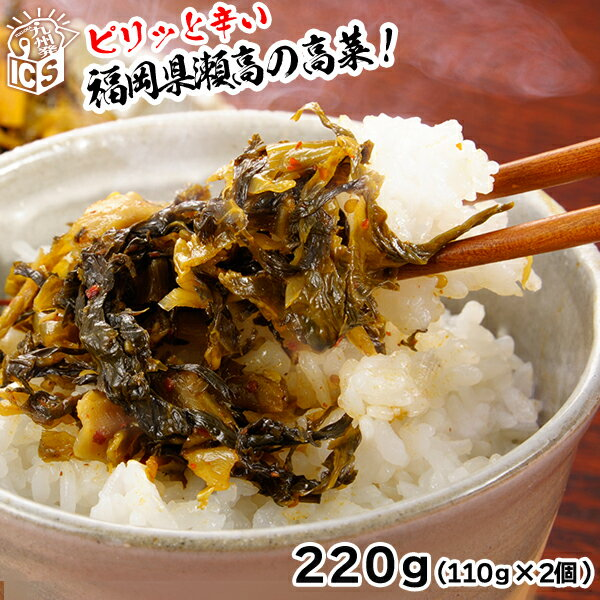 福岡県瀬高たかな漬け 辛子高菜220g(110gx2個) メール便送料無料 MSM