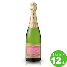 ポール・ルイ ブリュット PaulLouis定番 750 ml ×12本 フランス  サッポロビール ワイン【送料無料※一部地域は除く】