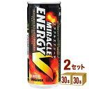 日本サンガリア ミラクルエナジーV缶 250ml×30本×2ケース (60本) 飲料【送料無料※一部地域は除く】