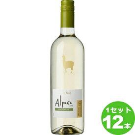 アサヒ サンタ・ヘレナ・アルパカ・ソーヴィニヨン・ブランSANTA HELENA ALPACA SAUVIGNON BLANC定番 白ワイン チリ/セントラル・ヴァレー750ml×12本 ワイン【送料無料※一部地域は除く】【取り寄せ品 メーカー在庫次第となります】