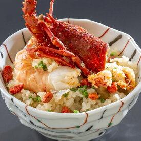 新商品 数量限定 伊勢海老御飯10個セット+1個プレゼント 200g レンジでチンOK 冷凍米飯