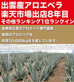 【お徳用】【食用アロエ】出雲産アロエベラ「まいにちアロエ」500g×10パック(冷蔵カットアロエ)