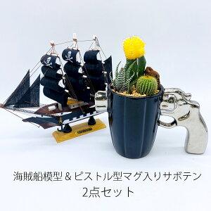 伊豆シャボテン本舗ガンマグ鉢付き & 海賊船20cm 2点セットサボテン 多肉植物 インテリア