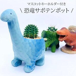 伊豆シャボテン本舗観葉植物 サボテン 多肉植物 恐竜 ポット入り(M)&恐竜キーホルダー2点セット 植木鉢