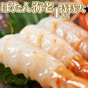 【送料無料】天然ぼたん海老/特特特大1kg<エビ/えび/生食/お刺身/海鮮丼/味噌汁/業務用>