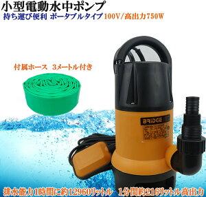 水中ポンプ 小型 電動ポンプ ホース付き 100V 216L/1Min 自動車 船舶 農作業 水槽 台風 災害浸水 汚水 キャンピングカー ジェット