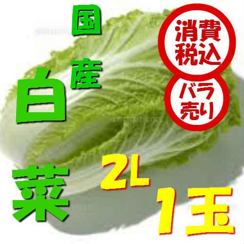 【税込 バラ売り】長野県産他 白菜 1玉(はくさい ハクサイ 鍋 鍋食材)上越フルーツ