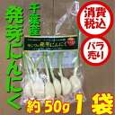 【税込 バラ売り】千葉県産 発芽にんにく 約50g 1袋(ニンニク はつがにんにく)上越フルーツ