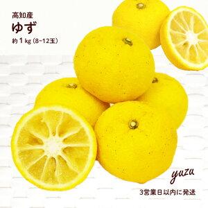 【箱売 送料無料】ゆず 約1kg 12〜8玉 高知産 | ユズ 柚子 柚 1キロ 果物 高知 冬 送料無料 上越フルーツ
