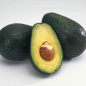 【税込 バラ売り】メキシコ県産他 アボガド 1個(あぼがど アボ)上越フルーツ