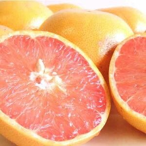【送料無料 箱売 消費税込】南アフリカ産他 グレープフルーツ 赤35玉  1箱 上越フルーツ