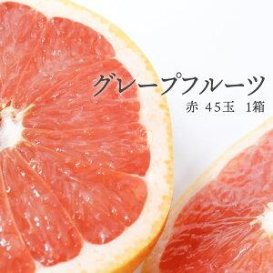 【送料無料 箱売 消費税込】南アフリカ産他 グレープフルーツ 赤 45玉 1箱 上越フルーツ