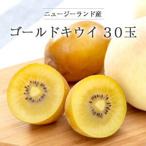 【送料無料 箱売】 ニュージーランド産 ゴールドキウイフルーツ 30玉 1箱 | 業務用 ごーるど きうい 黄色 お取り寄せ 果物 フルーツ まとめ買い 新鮮果物 上越フルーツ