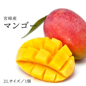 【税込 バラ売り】宮崎県産他 完熟マンゴー 2L 1玉 | マンゴー マンゴ まんごー 宮崎 MANGO フルーツ 上越フルーツ