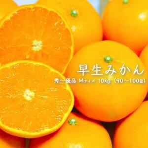 【送料無料 箱売 消費税込】 熊本県産他 早生みかん 10kg 上越フルーツ