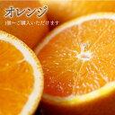 【税込 バラ売り】オーストラリア産他 オレンジ 1個(おれんじ みかん ミカン)上越フルーツ