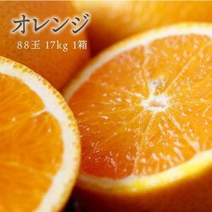 【送料無料 箱売 消費税込】アメリカ産他 オレンジ 88玉 約 17kg 1箱 (業務用 おれんじ)上越フルーツ