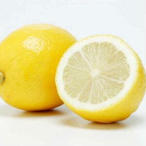 【送料無料 箱売 消費税込】アメリカ産他 レモン 115玉 約 15kg 1箱 (業務用 れもん 檸檬)上越フルーツ