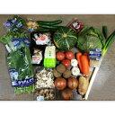 野菜詰め合わせ 13品以上を箱に詰め込んでお届け!(野菜詰合せ おまかせ野菜 詰め合わせ)上越フルーツ