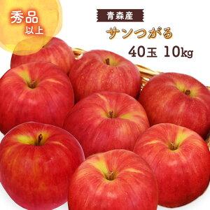 【箱売】 サンつがる 秀品 40玉 10kg 青森産 <クール便> | りんご リンゴ 林檎 10キロ 青森 旬 果物 上越フルーツ