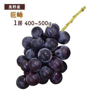 巨峰 1房(約400〜500g) 長野産 <クール便> | ぶどう ブドウ 葡萄 長野 旬 果物 上越フルーツ