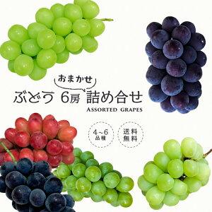 【送料無料】 ぶどう 6房 詰め合わせ <クール便> 種類の違うぶどうをお任せで詰合せ   ブドウ 葡萄 箱 長野 旬 果物 秋 お任せ 詰合せ 食べ比べ 上越フルーツ