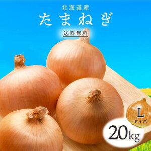 【送料無料】北海道産 たまねぎ L 20kg 1箱 | 玉ねぎ タマネギ 玉葱 玉ネギ L オニオン 箱 まとめ買い 野菜 根菜 業務用 上越フルーツ