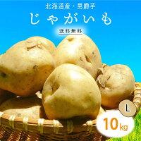【本州送料無料税込】お買得徳用常備野菜北海道産じゃが芋(芽止め)L10kg